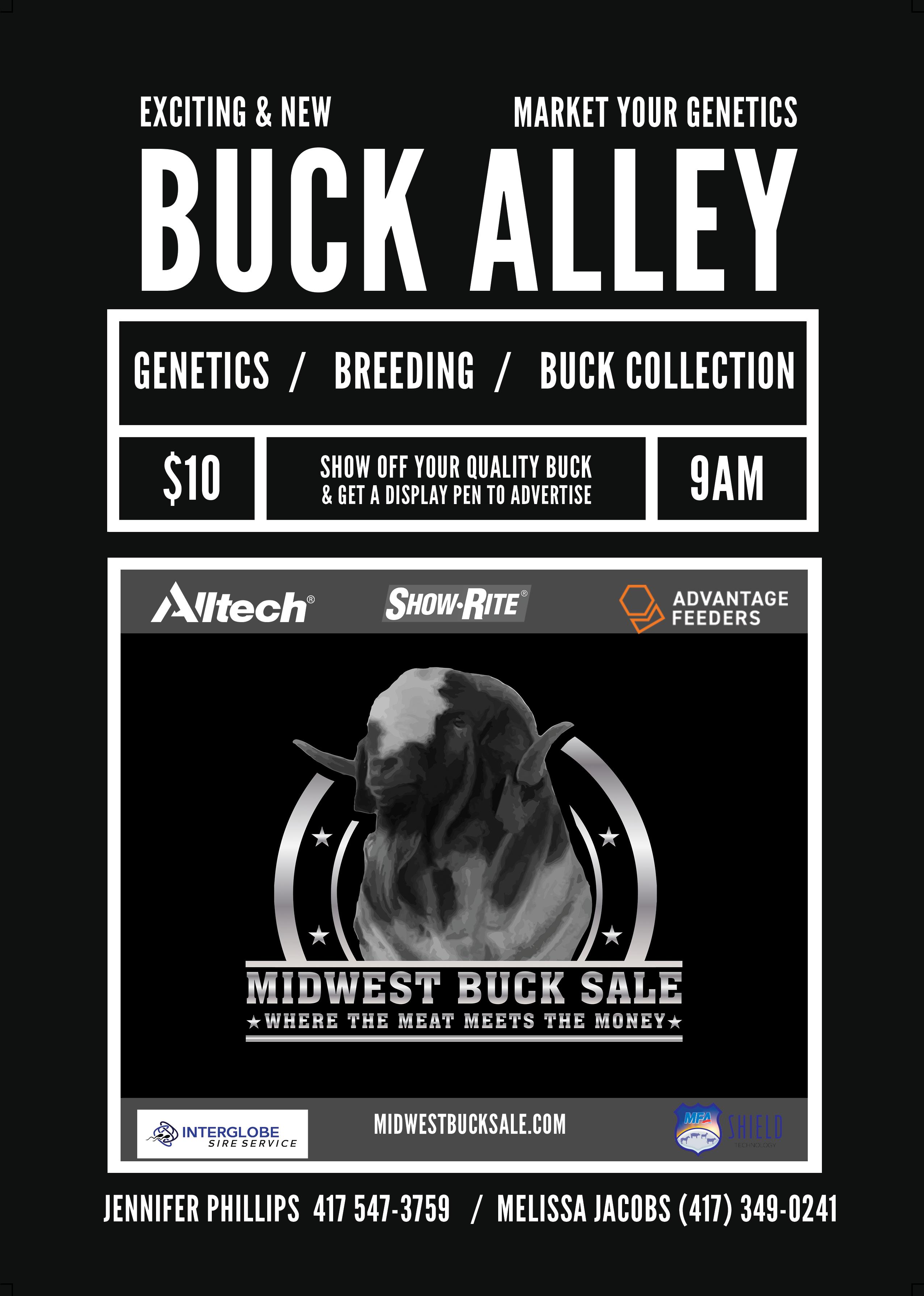 Buck Alley